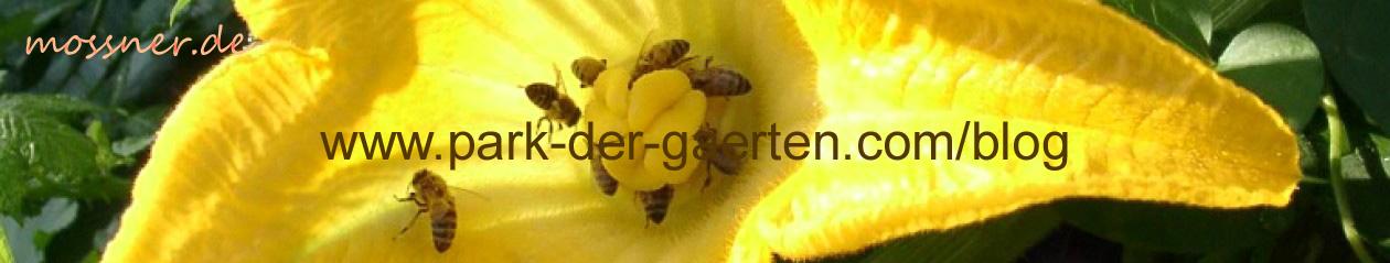 priv. Blog von Gerd Mossner – Rastede